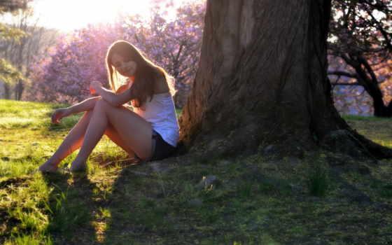 девушка, девушки, весна, свет, большого, shadow, boston, mix, присела, дерево, траву, прекрасно,