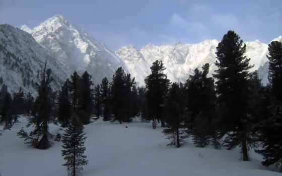 нояб, our, обновляют, winter, горы, природа, категория, совершенно, daily, пользователи, самые,