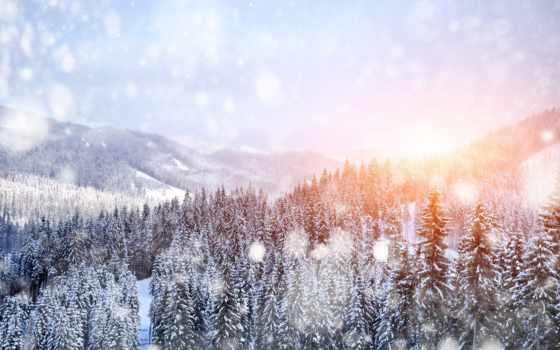 winter, природа, снег, trees, горы, landscape, высоком, качестве, январь, базе,