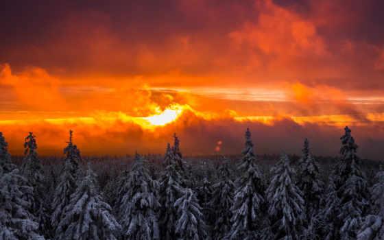 , восход, красный, лес, облака, снег,