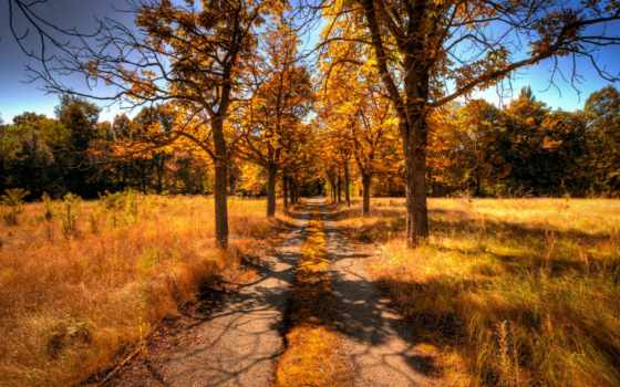 осень, пейзаж Фон № 32010 разрешение 1920x1080