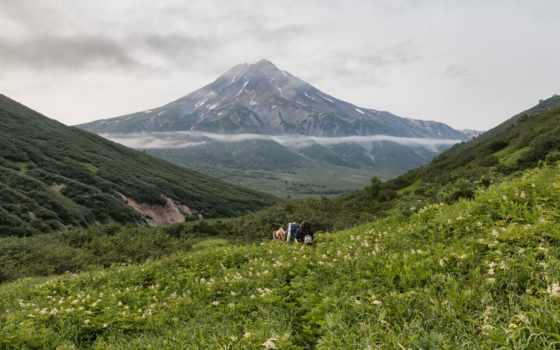 изображение, россия, mountains, природа, scenery, камчатка, фото, трава, free,