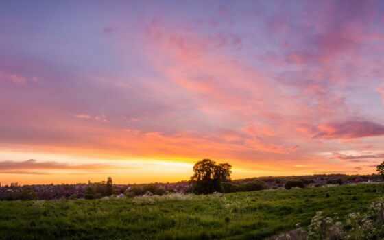 even, поле, небо, закат