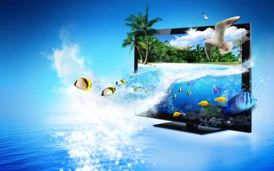 море, пальмы Фон № 22573 разрешение 2560x1600