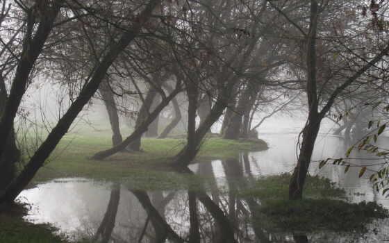 туман, вода