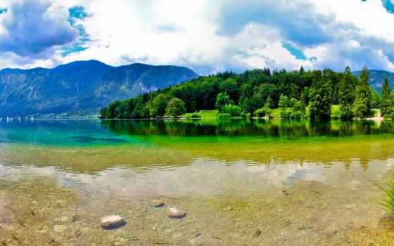 summer, природа, озеро, гладь