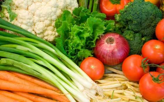 лук, овощи
