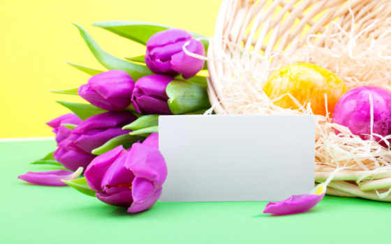 цветы, easter, весна