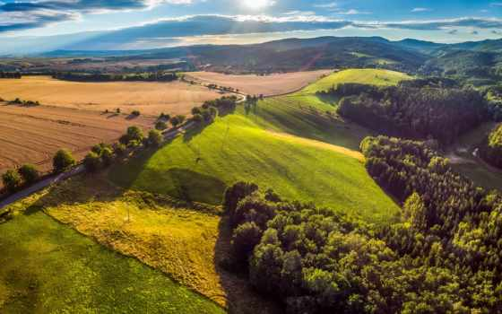фак, grassland,