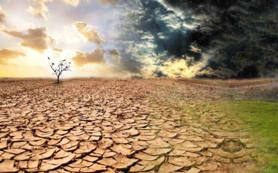 seca, terra, parede, papéis, baixar, para, que,