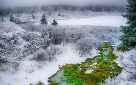 природа, снег, winter, природой, лес, места, пейзажи -,