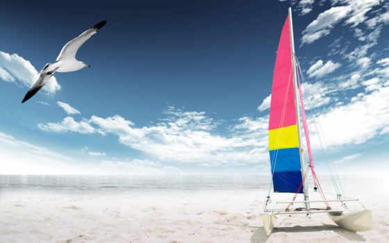 пляж, заказать, more, dnngo, dnn, чайка, skin, море, марк,