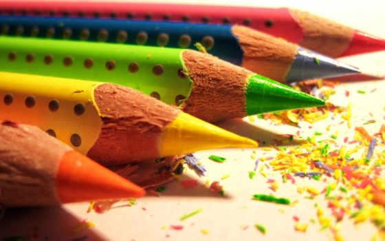 карандаши, цветные, макро