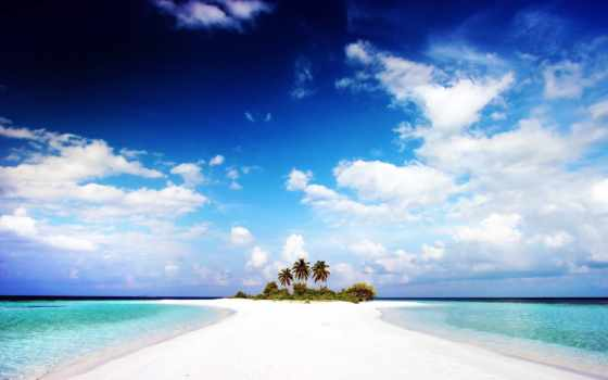 остров, her, palm, коллекция, пляж, песок, главное, хороший, качество, white