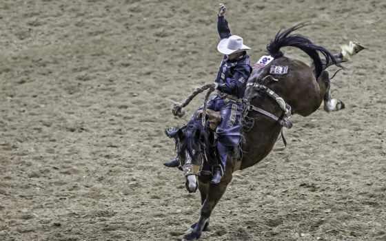 июня, ковбой, лошади