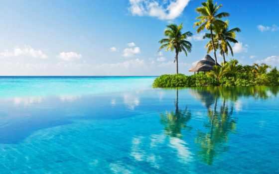 maldive, del, mare, costa, ди, globale, oferta, stock,