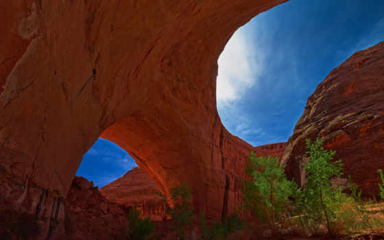 coyote, gulch, utah, арка, escalante, usa, каньон, ущелье,