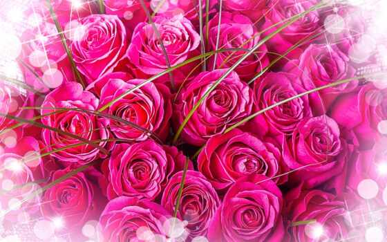 роза, день, wish, case, счастье, улыбка, anniversary, birth, поздравление