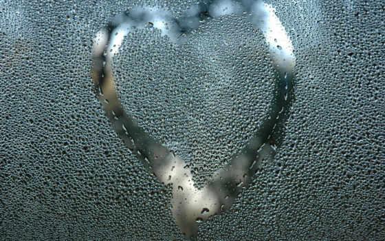 капли, glass, стекле, happy, роза, top, love, об, дождь, subscribe, ней, сердца, опубликовано, рисунок,