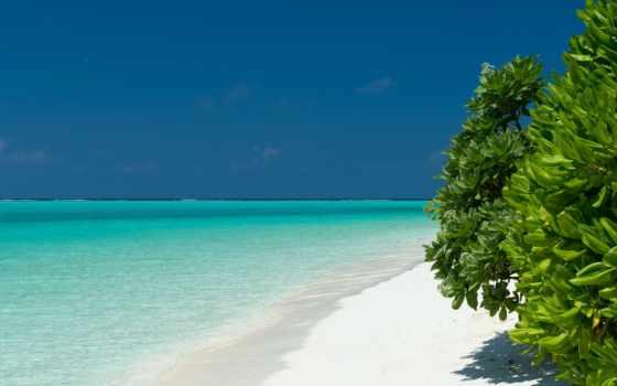 пляж, desktop, maldive