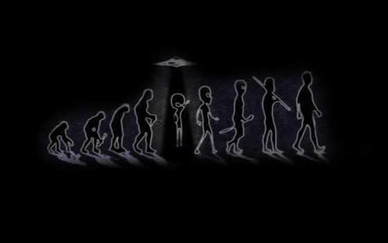 происхождение, эволюция