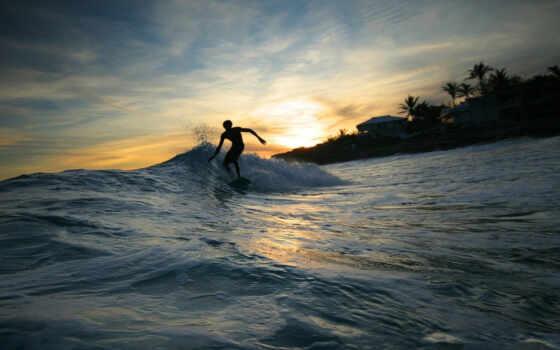 surfing, sports, wave