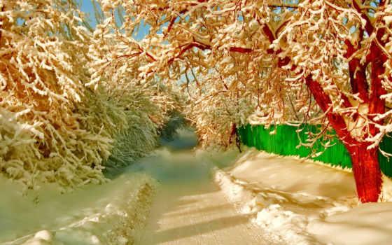 коллекция, снег