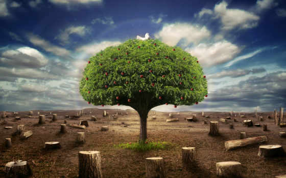 les, фэнтези, вырубленный, яблоня, одна, белый, gol, ней, дерево, lex,