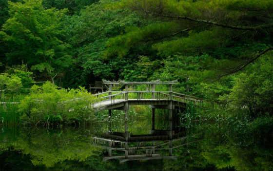 природы, уголками Фон № 14770 разрешение 1920x1200
