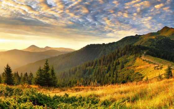 природа, свет, широкоформатные