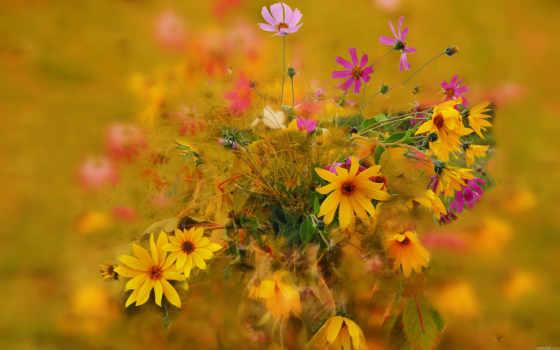 цветы, букет, красавица