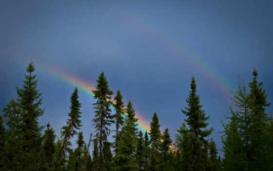 priroda, радуга, небо