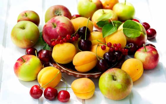 еда, правильное, спортом, спорт, питания, health, правильного, необходимо,