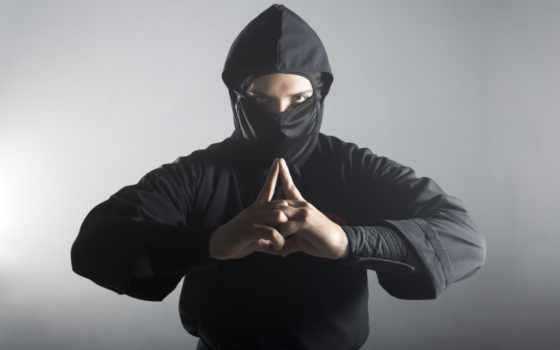 ninja, real, shot, дым, засыпанный, them, еда, get, shutterstock, наши