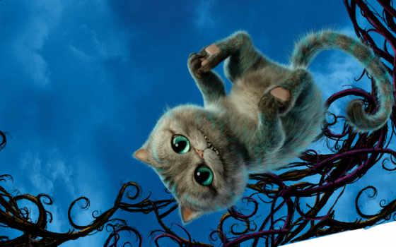 алиса, кот, wonderland, чеширский, фильмы,