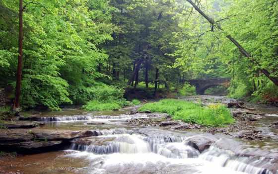 мост, лес, река, лесная, ручей, landscape, водопад,