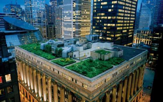 сад, крыше