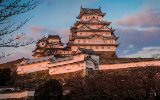 castle, himedz, япония, white, цапля