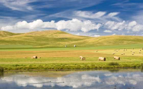 поле, холмы, небо, река, озеро, сено, тюки, утки, природа,
