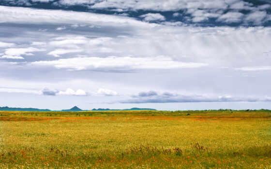 осень, степь, weed, природа, трава, лес, поле