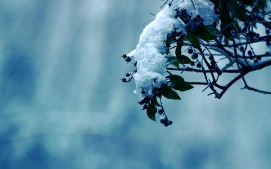 природа, холод