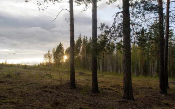 закат, природа Фон № 31883 разрешение 1920x1080