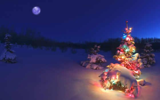 christmas, огни, снег