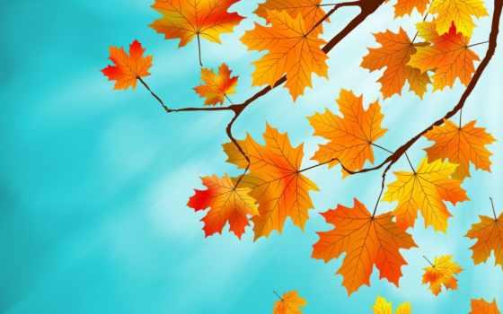 листва, осень, осенние Фон № 141377 разрешение 1680x1050