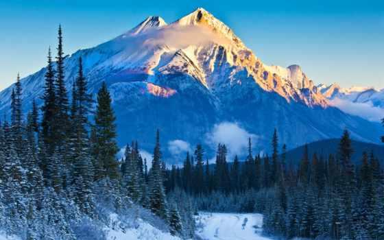 philips, монитор, канада, lumia, альберта, national, park, экологичный, banff, mountains, мини,