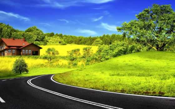 асфальт, дорога, разметка, поворот, зелёный, яркий, house, trees, контрастность,