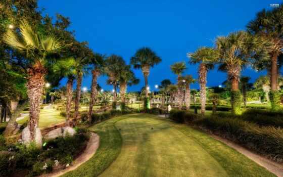 golf, palma, solitairian, permission, macbook, pro, город, оригинал, природа, синий, mazhorel