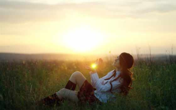 солнце, трава, pole