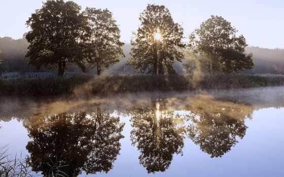 над, park, jeziorem, wschód, słońca, chojnowski, krajobrazowy, mazowsze, turystyczny, czarnym, narodowy,