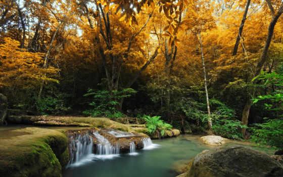 осень, природа, trees, река, картинка, лес, водопады, ручей, супер, леса,